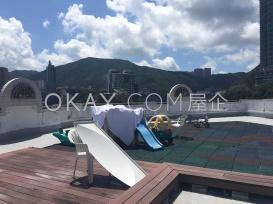 Roof playground