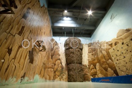 Rock Climbing Room
