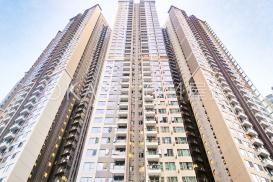 Parc City - For Rent - 522 sqft - HKD 22.5K - #391670