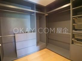 Walk-in Closet in Master Bedroom