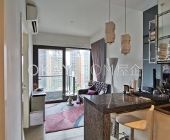 The Pierre - For Rent - 305 SF - HK$ 10.3M - #209627