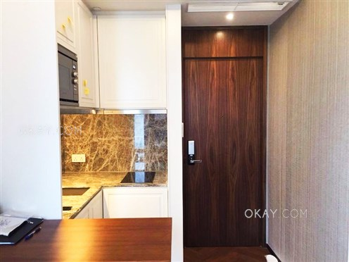 HK$18.5K 244sqft One South Lane For Sale and Rent