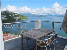 HK$110K 0SF Buena Vista For Rent